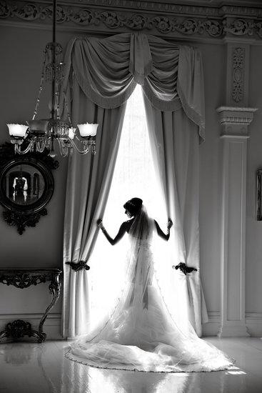 Beautiful Bridal Silhouette