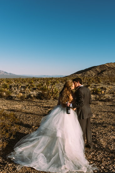 Mt. Charleston Elopement
