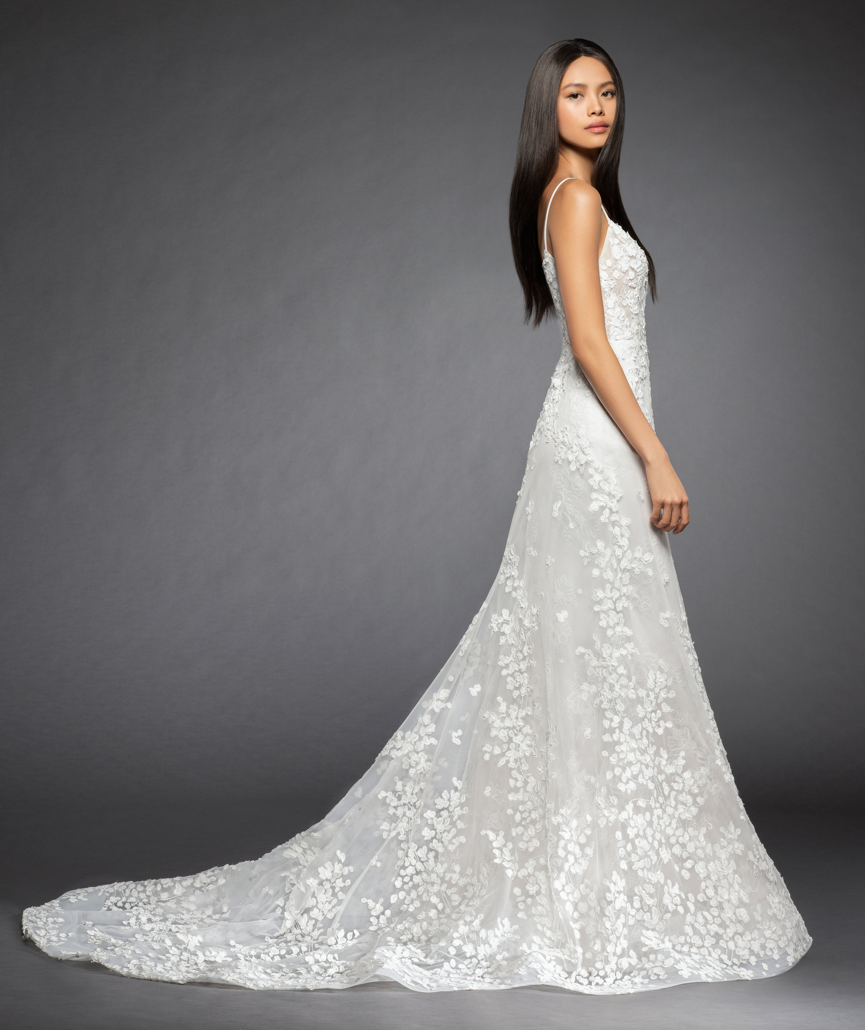 fa1d652f2d6b Bridal Gowns and Wedding Dresses by JLM Couture - Style 3853 Milena