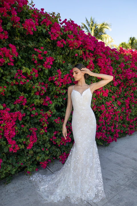 Blush by Hayley Paige Style Reign 12151 Bridal Gown