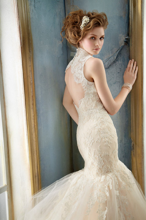 Style 8214  back view