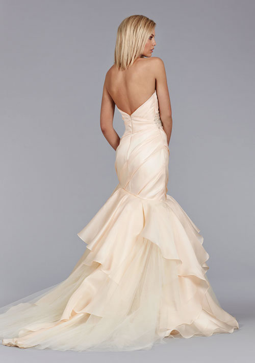 Style 8462  Back View