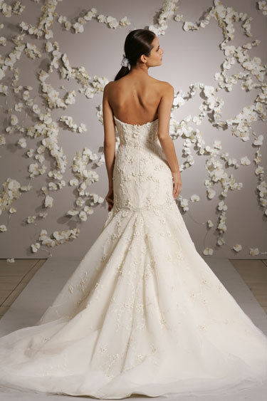 Style 3002  Back View