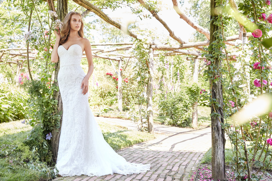 Ti Adora by Allison Webb Style 7757 Bridal Gown
