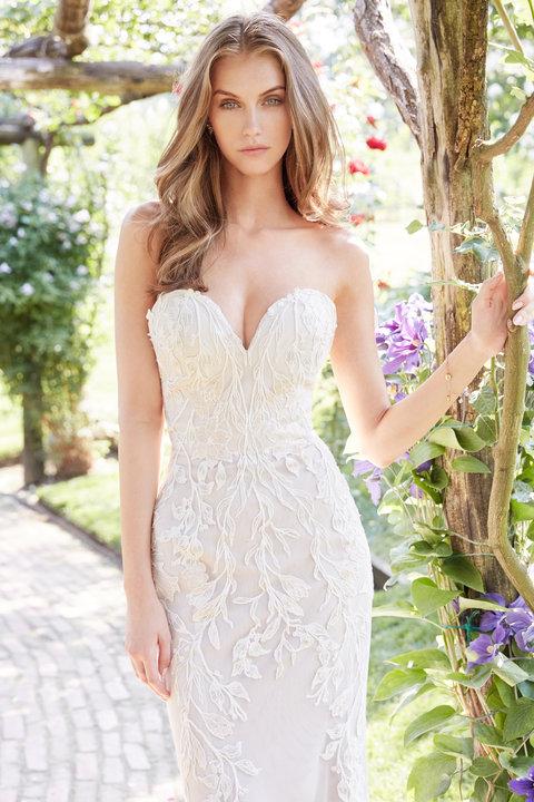 Ti Adora by Allison Webb Style 7760 Bridal Gown