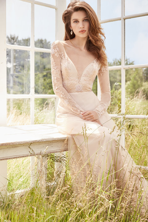 Tara Keely by Lazaro Style 2752 Bridal Gown
